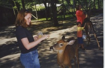 Erin feeds Bambi