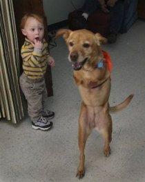 faith-dog-and-little-boy