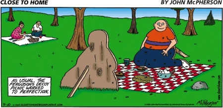 cth-decoy-picnic