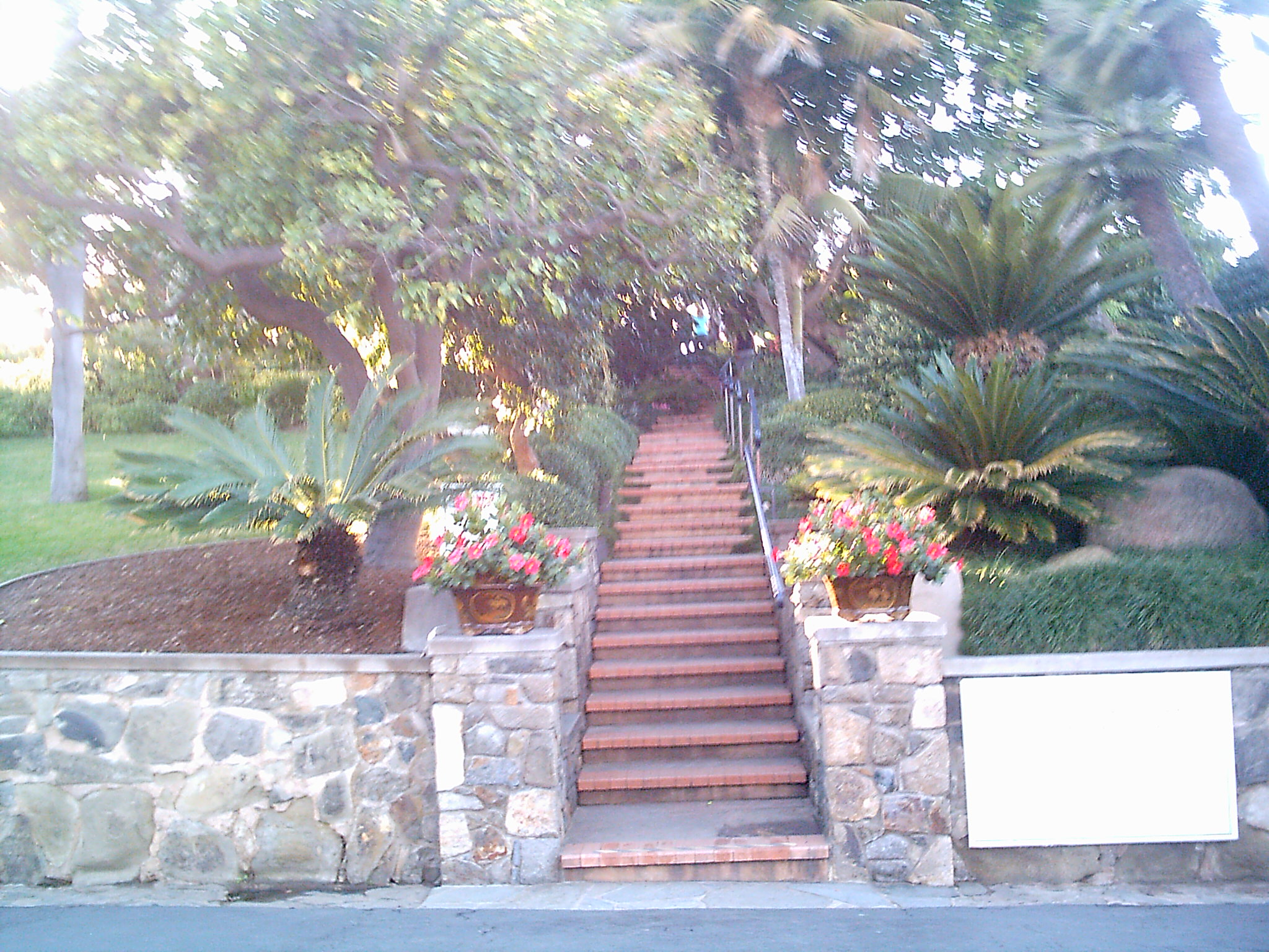 Immediately upon entering the Self-Realization Fellowship Meditation Gardens