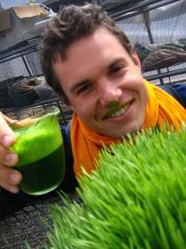 """David Rainoshek: """"Got wheatgrass?"""""""