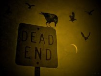 dead-end-crows-illustration